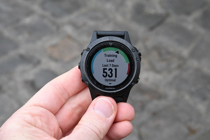 Garmin-Fenix5-TrainingLoad_thumb.jpg