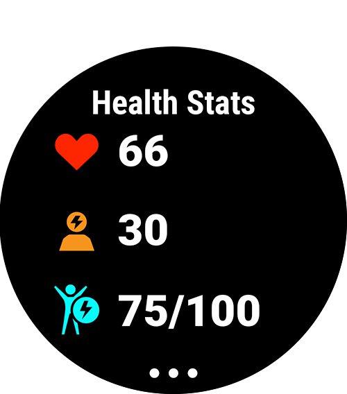 Состояние здоровья в forerunner 45